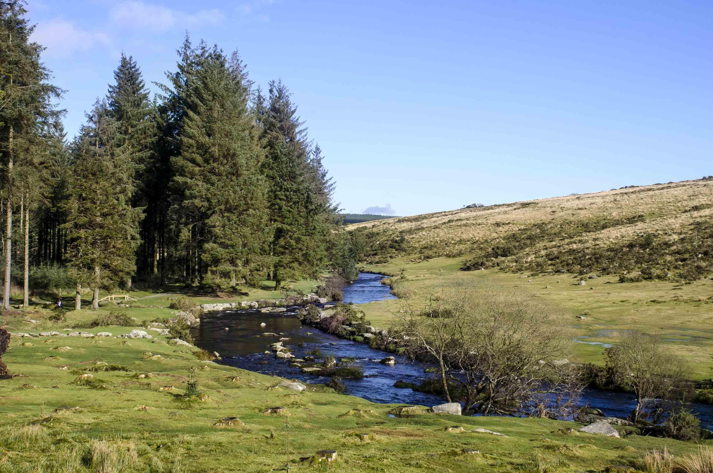 bellever-river